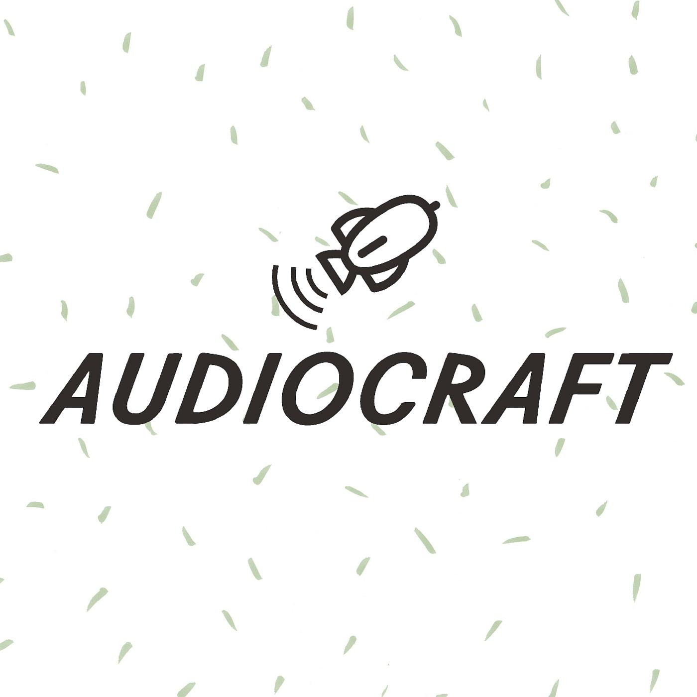 Audiocraft Conference Series