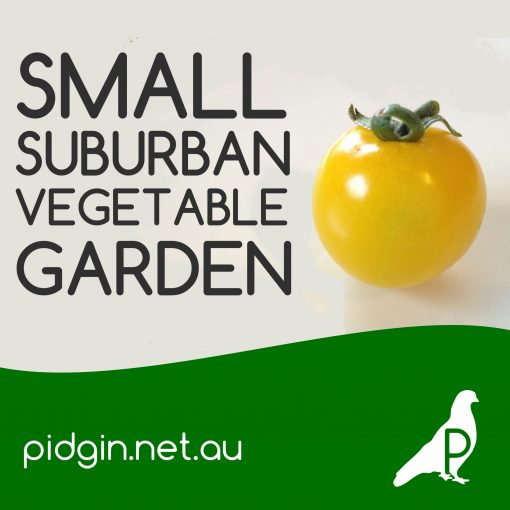 Small Suburban Vegetable Garden