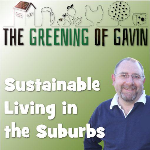 The Greening Of Gavin
