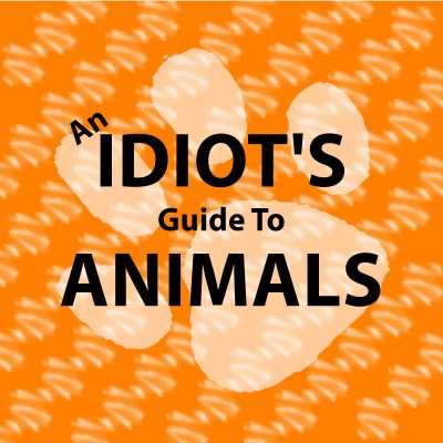 An Idiots Guide To Animals